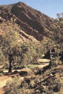 Flinders Ranges scene