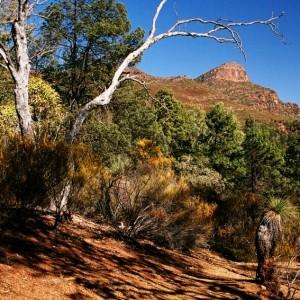 St Mary Peak escarpment
