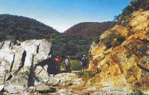 Tourilie Gorge