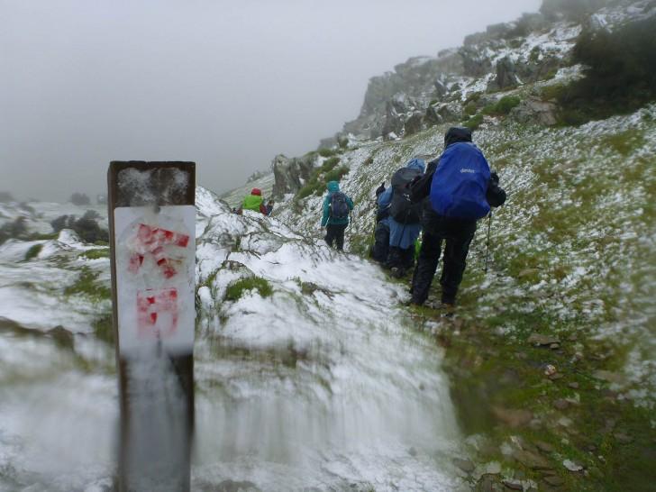 Snow on the summit of Mt Bryan, Saturday 28th June 2014