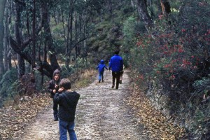 Slowest ever completion of the Heysen Trail?