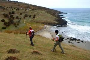 Blowhole_Beach_walking_on_the_Heysen_Trail